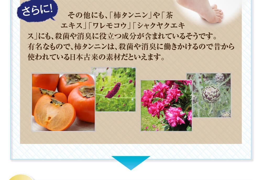さらに、そのほかにも、「柿タンニン」や「茶エキス」「ワレモコウ」「シャクヤクエキス」にも殺菌や消臭に役立つ成分が含まれているそうです。