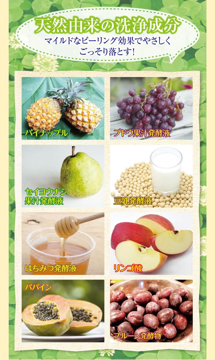 パイナップル、ブドウ果汁発酵液、セイヨウナシ果汁発酵液、豆乳発酵液、はちみつ発酵液、リンゴ酸、パパイン、プルーン発酵液