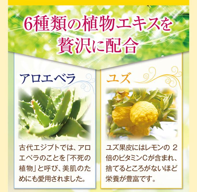 6種類の植物エキスを贅沢に配合アロエベラ、ユズ