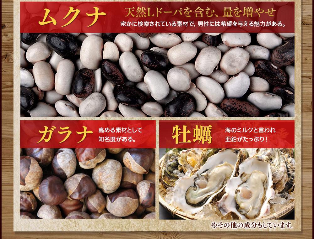 ムクナ・ガラナ・牡蠣