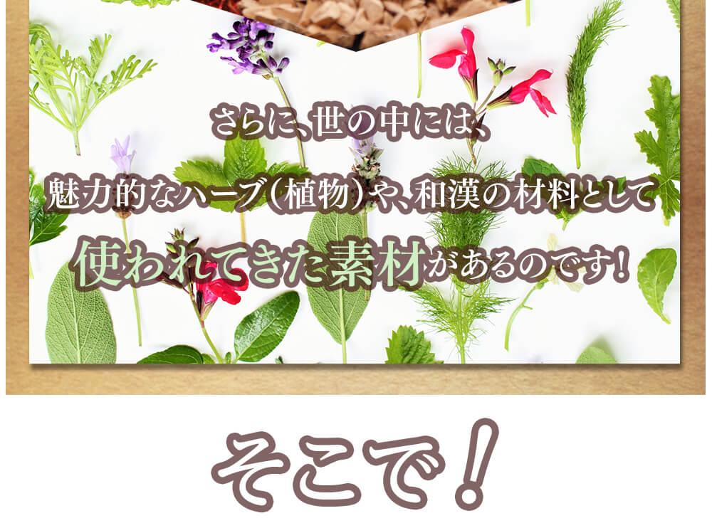 さらに、世の中には、魅力的なハーブ(植物)や、和漢の材料として使われてきた素材があるのです!