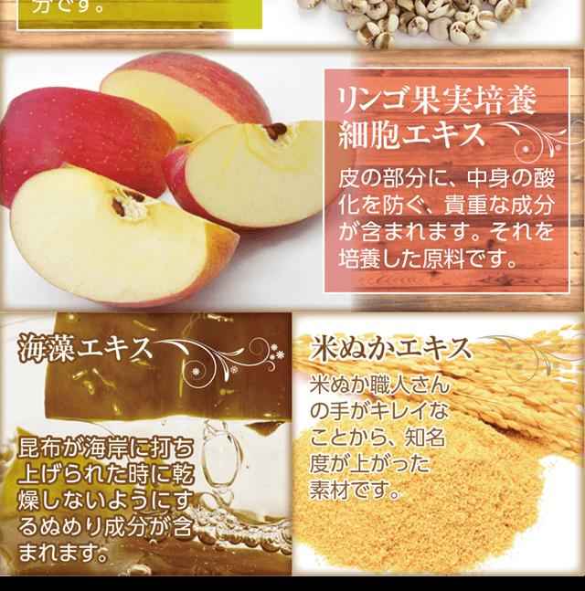 リンゴ尾果実培養細胞エキス皮の部分に中身の酸化を防ぐ成分米ぬかエキス海草エキス