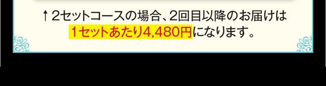 2セットの場合2回目以降のお届けは1セットあたり4,480円です
