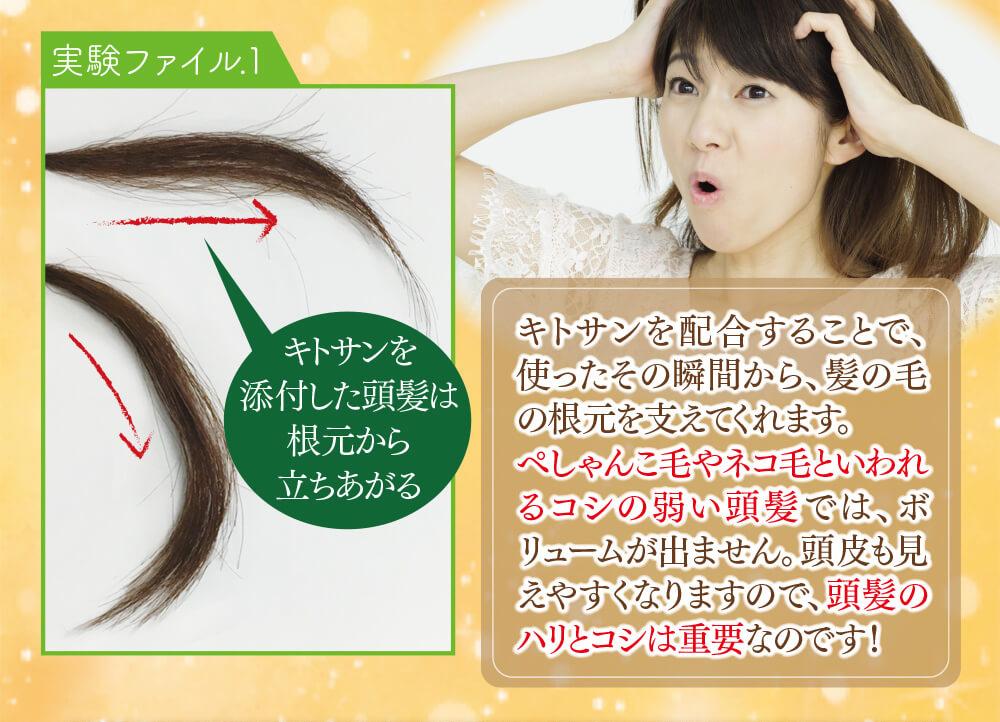 キトサンを配合することで、使ったその瞬間から、髪の毛の根元を支えてくれます。ぺしゃんこ毛やネコ毛といわれるコシの弱い頭髪では、ボリュームが出ません。頭皮も見えやすくなりますので、頭髪のハリとコシは重要なのです!
