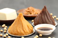発酵食品イメージ
